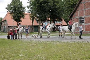 Reiterferien auf dem Forstgut Rehrhof