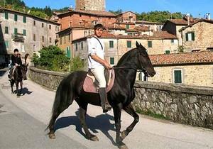 Ausritt durch Norditalien mit den Pferden