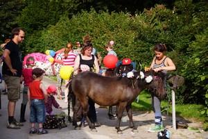 Ponyfasching