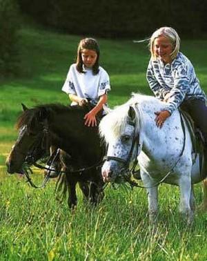 Kinder auf den Ponys