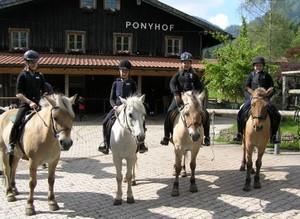 Ponyreiten, Reiterferien, Reutunterricht, Ausritte