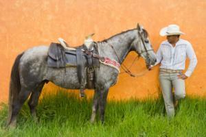 Reiturlaub und Reiterferien im Reithotel Mexiko