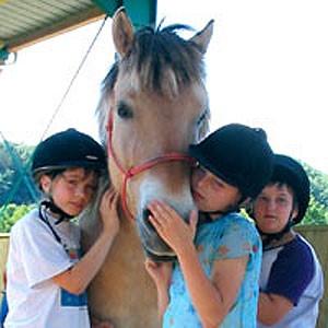 Unsere Pferde lieben Kinder