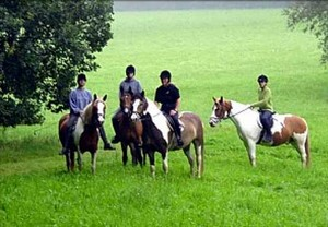 Ponyhof Ludwig - Reiterferien in Rheinland-Pfalz