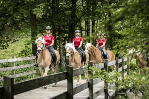 Reitrulaub im Sommer - Ausritte ins Gelände, Vorarlberg