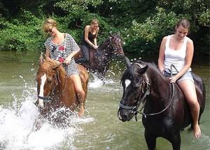 Wasser-Spaß für Pferd und Reiter