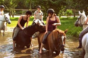 Reiterurlaub und Reiterferien für Kinder und Familien