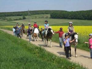 Ponyreiten in Rheinland-Pfalz im schönen Taumus