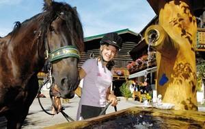 Reiterferien in Österreich am Bauernhof