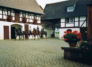 Pferdehof Berger in Sachsen