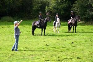 Reitunterricht und Reitausbildung in Irland