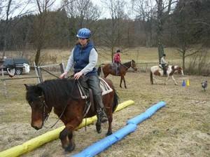 Dualaktivierung für Ihr Pferd