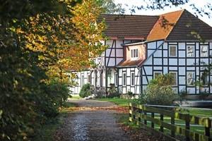 Haflingerhof Leichtmann in der Lüneburger Heide