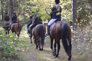 Reiturlaub am Bauernhof in Masuren