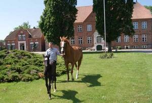 Ferien im Sattel in Schleswig-Holstein an der Ostseeküste