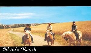 Ein schöner Ritt von Silvio`s Ranch aus in Sachsen
