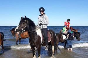 Reiterferien an der Ostsee - Insel Fehmarn