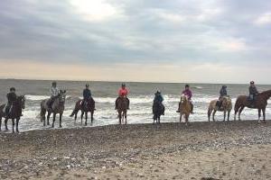 Strandritte an der Ostsee