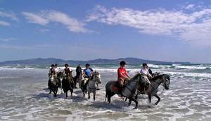 Strandgalopp mit dem Pferd in Spanien - Katalonien