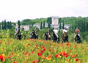 Reiten durch Mohnblumenfelder in der Toskana