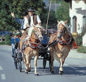 Kutschfahrt vom Reiterhotel aus
