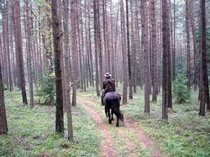 Reiturlaub in Bayern