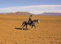 Abenteuer-Reiturlaub in der Wüste